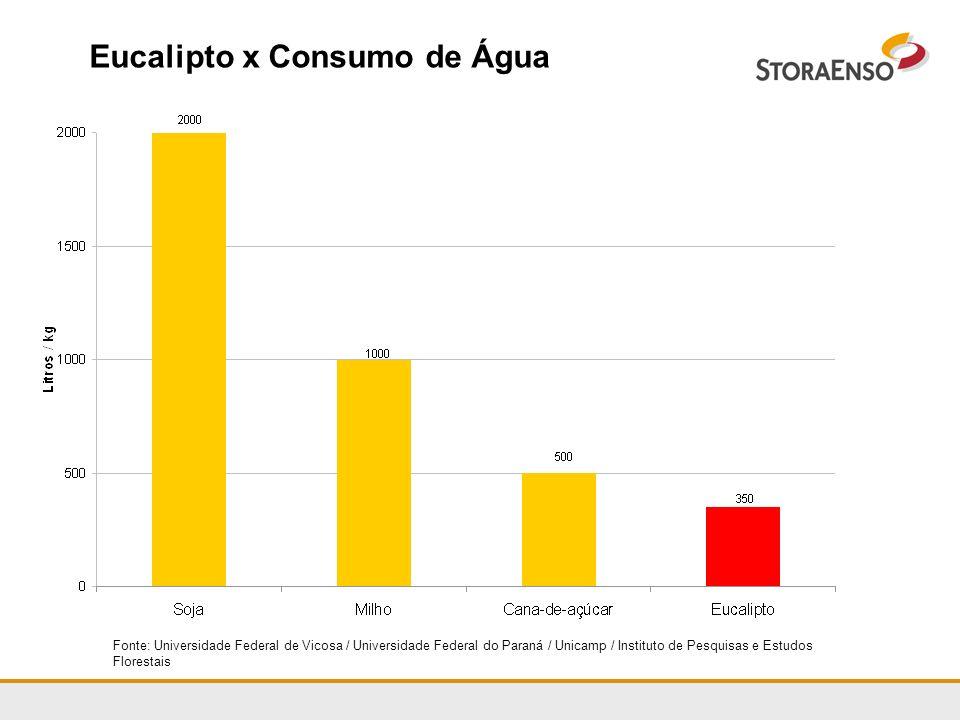Eucalipto x Consumo de Água