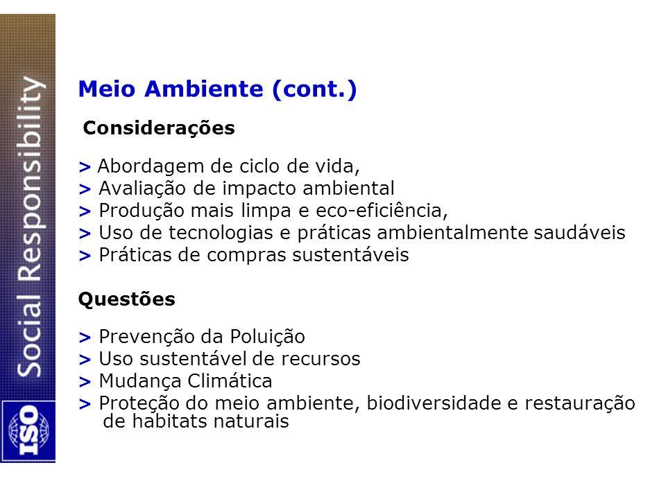 Meio Ambiente (cont.) Considerações Questões