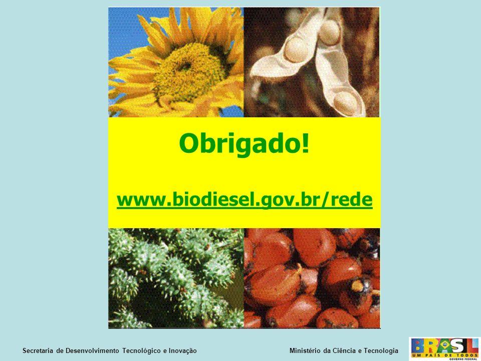 Obrigado! www.biodiesel.gov.br/rede