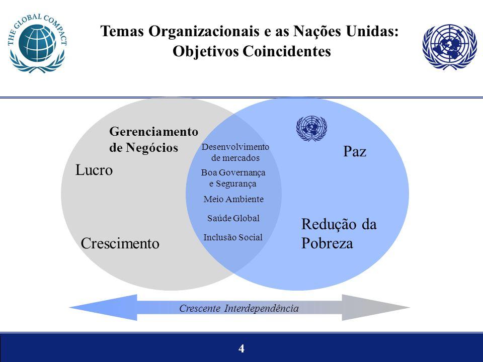 Temas Organizacionais e as Nações Unidas: Objetivos Coincidentes