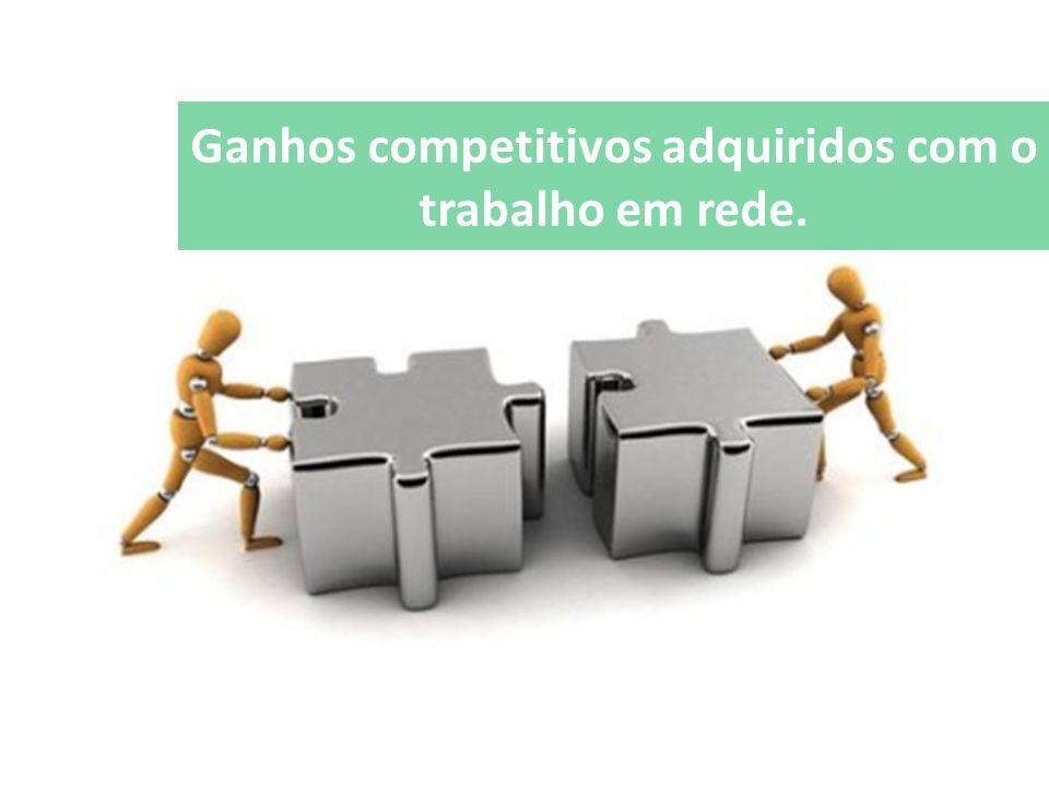 Ganhos competitivos adquiridos com o trabalho em rede.