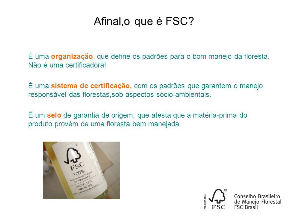 Afinal,o que é FSC É uma organização, que define os padrões para o bom manejo da floresta. Não é uma certificadora!