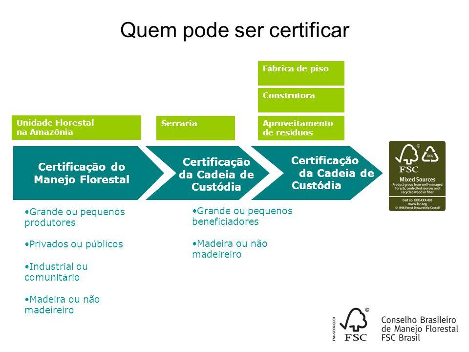 Certificação da Cadeia de Custódia Certificação do Manejo Florestal