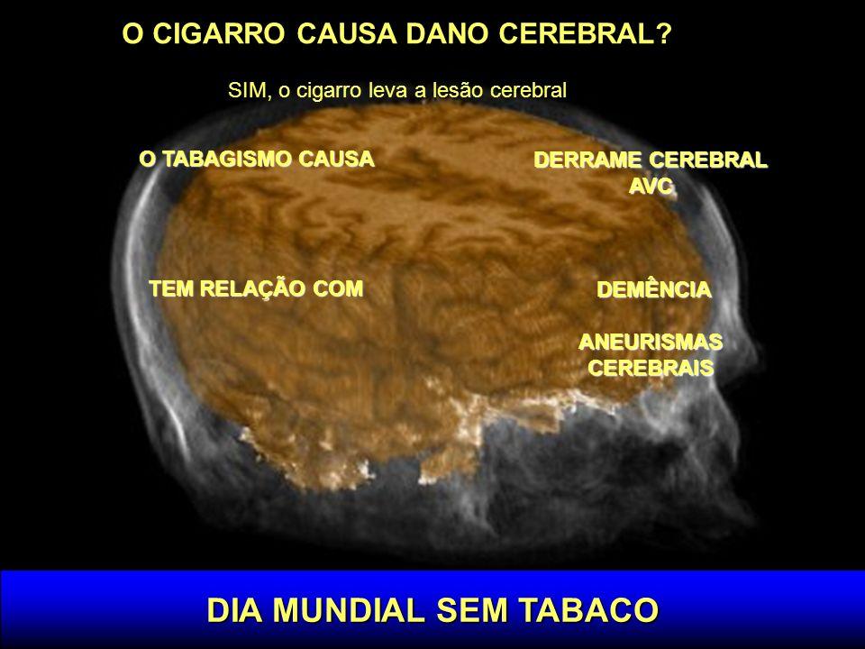 DIA MUNDIAL SEM TABACO O CIGARRO CAUSA DANO CEREBRAL