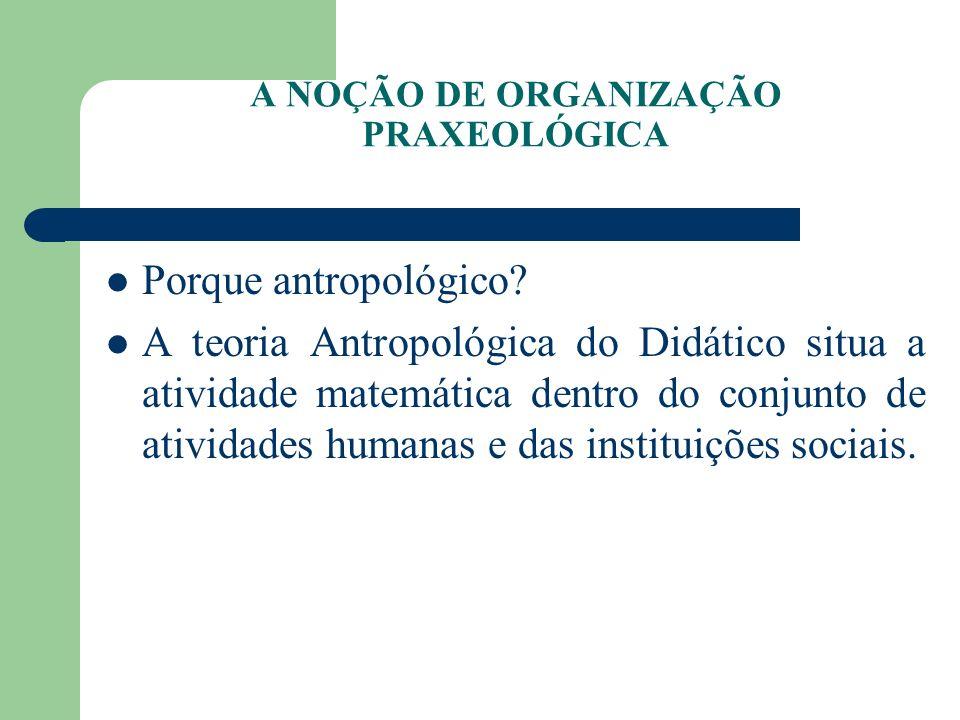 A NOÇÃO DE ORGANIZAÇÃO PRAXEOLÓGICA