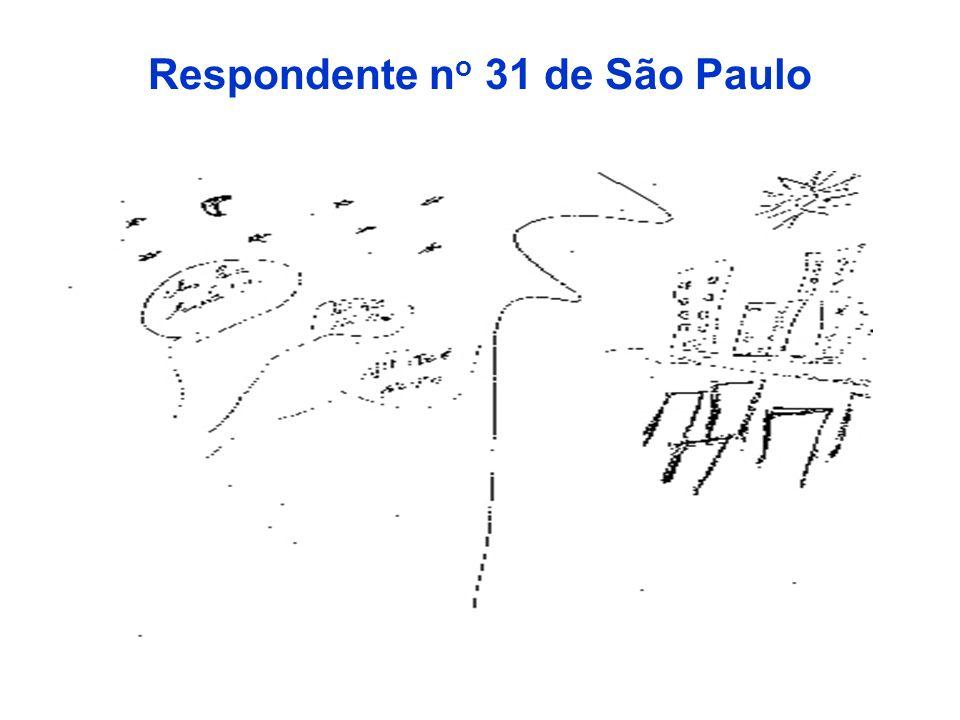 Respondente no 31 de São Paulo