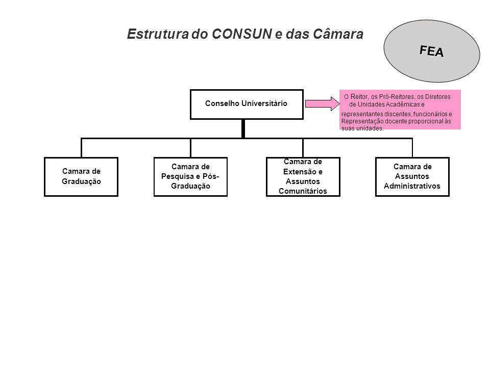 Estrutura do CONSUN e das Câmara