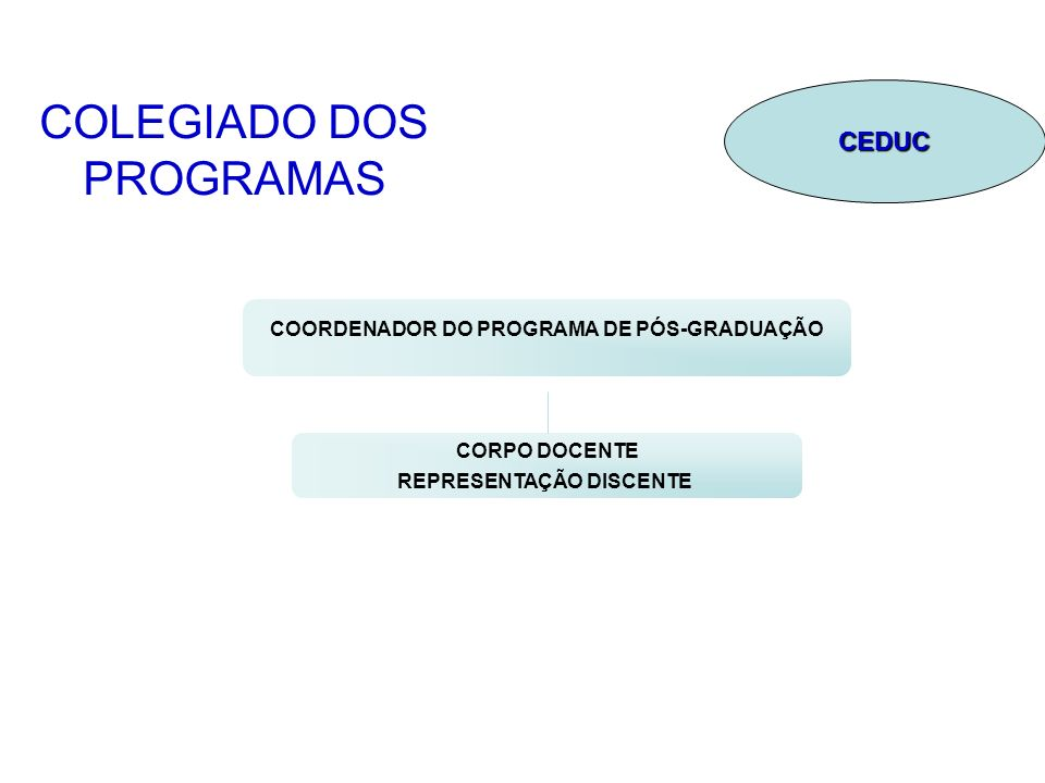 COLEGIADO DOS PROGRAMAS