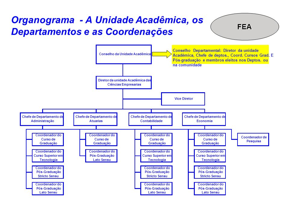 Organograma - A Unidade Acadêmica, os Departamentos e as Coordenações