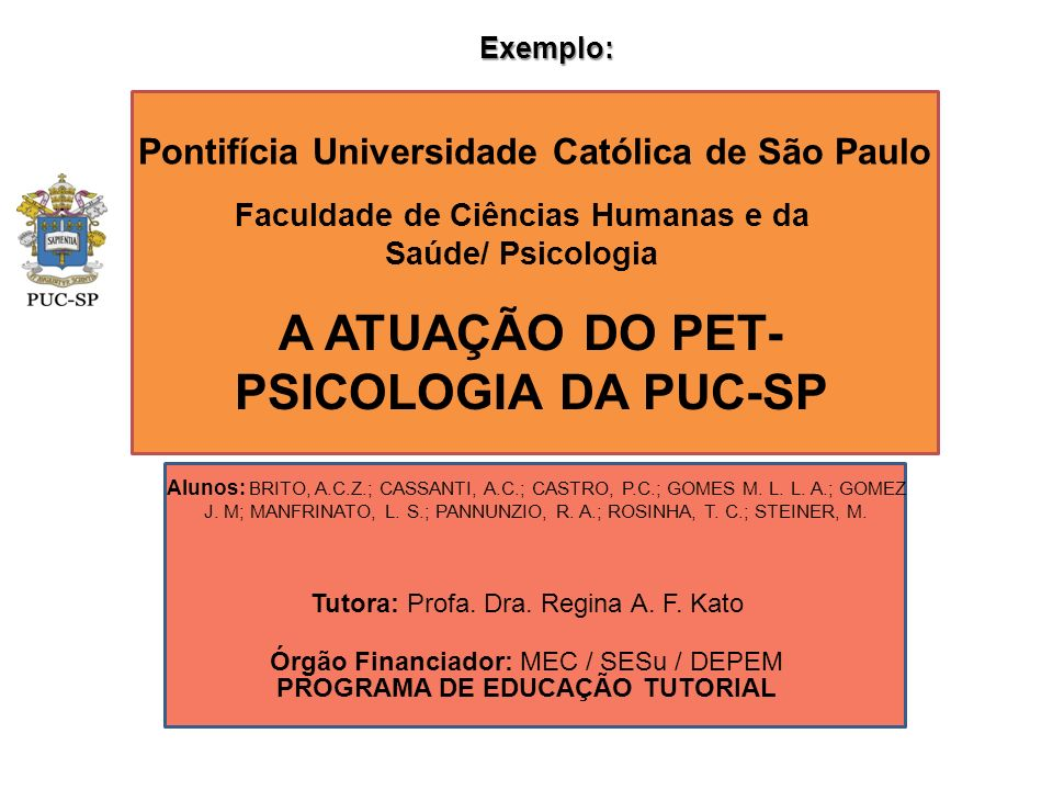 A ATUAÇÃO DO PET-PSICOLOGIA DA PUC-SP