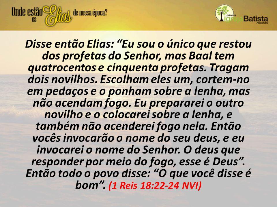 Disse então Elias: Eu sou o único que restou dos profetas do Senhor, mas Baal tem quatrocentos e cinquenta profetas.