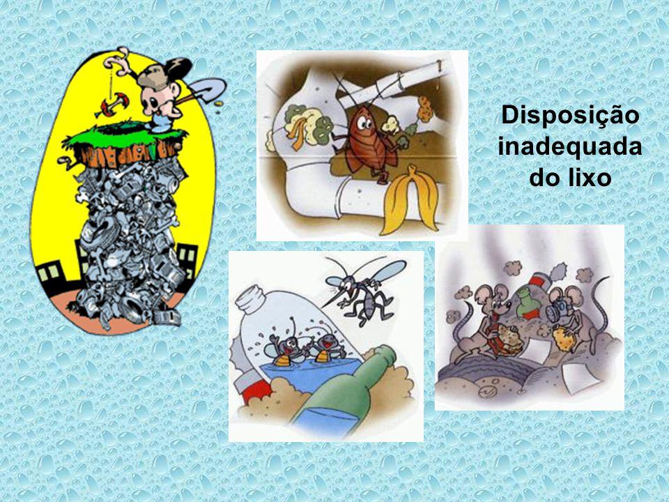 Disposição inadequada do lixo