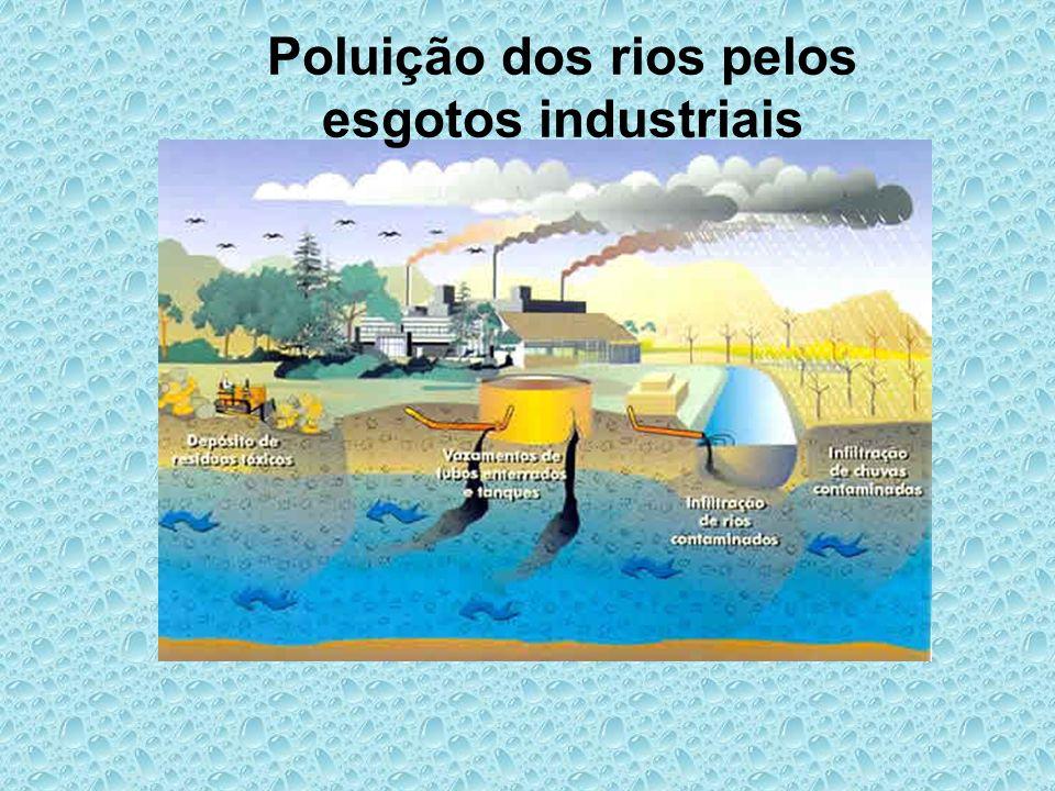 Poluição dos rios pelos esgotos industriais