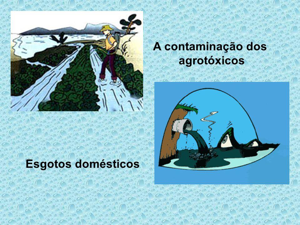 A contaminação dos agrotóxicos