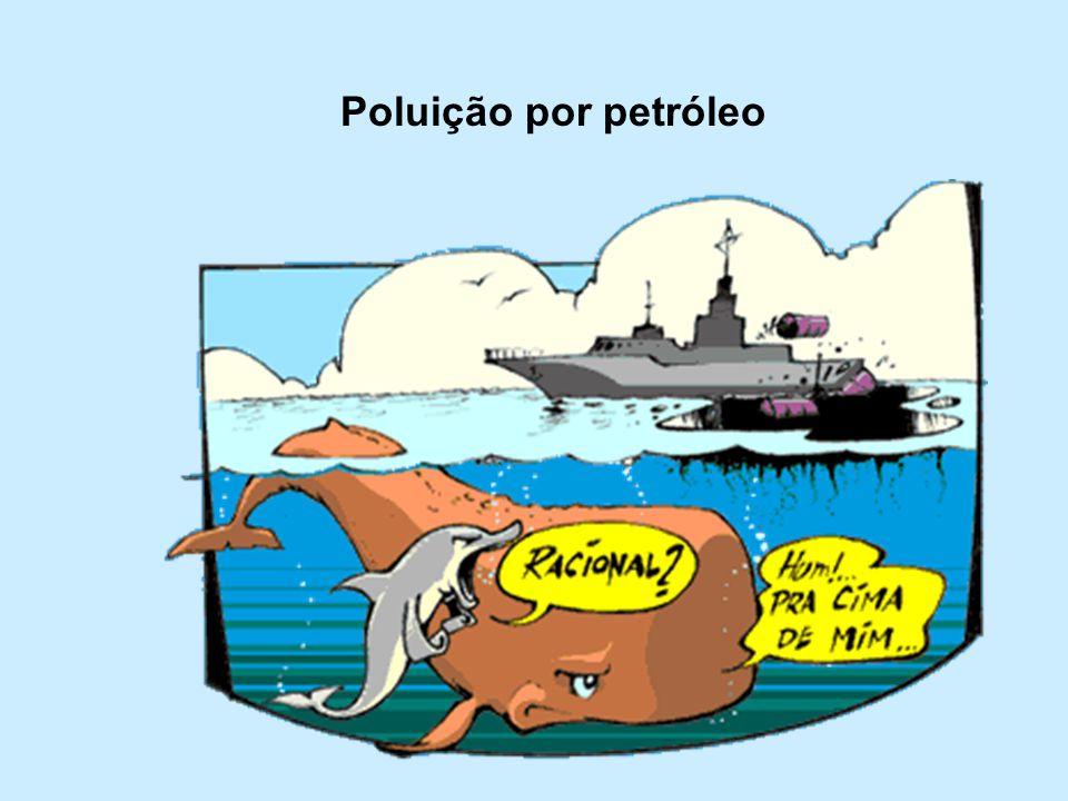Poluição por petróleo