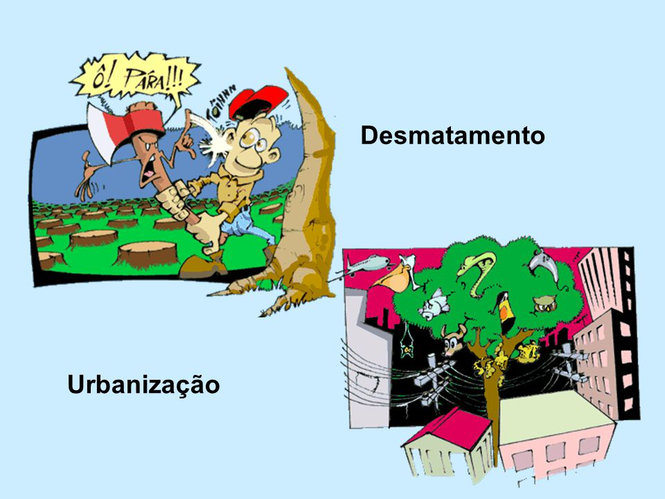 Desmatamento Urbanização