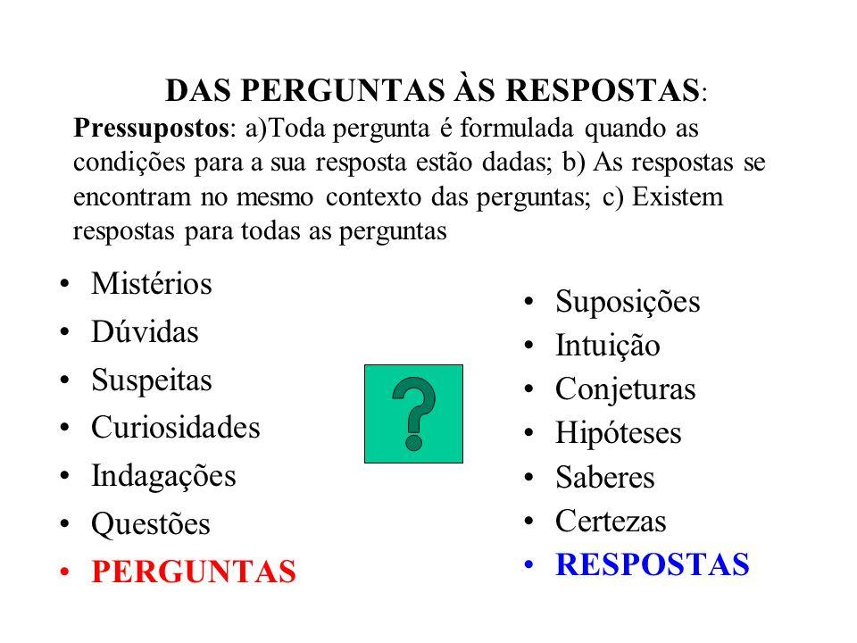 DAS PERGUNTAS ÀS RESPOSTAS: Pressupostos: a)Toda pergunta é formulada quando as condições para a sua resposta estão dadas; b) As respostas se encontram no mesmo contexto das perguntas; c) Existem respostas para todas as perguntas