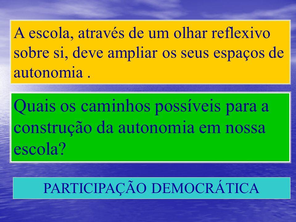 PARTICIPAÇÃO DEMOCRÁTICA