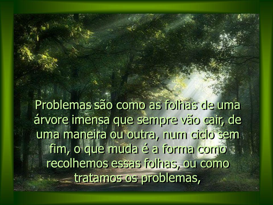Problemas são como as folhas de uma árvore imensa que sempre vão cair, de uma maneira ou outra, num ciclo sem fim, o que muda é a forma como recolhemos essas folhas, ou como tratamos os problemas,