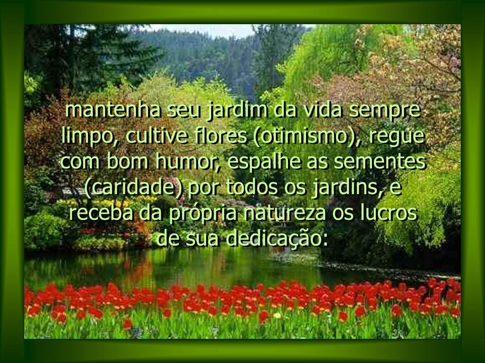 mantenha seu jardim da vida sempre limpo, cultive flores (otimismo), regue com bom humor, espalhe as sementes (caridade) por todos os jardins, e receba da própria natureza os lucros de sua dedicação: