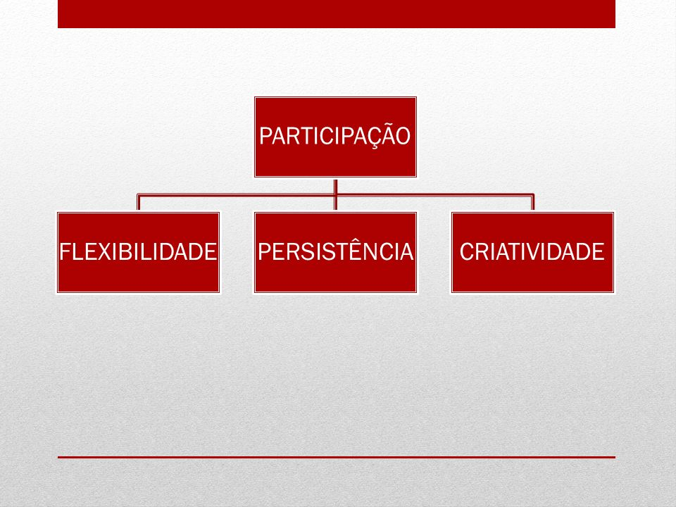 PARTICIPAÇÃO FLEXIBILIDADE PERSISTÊNCIA CRIATIVIDADE
