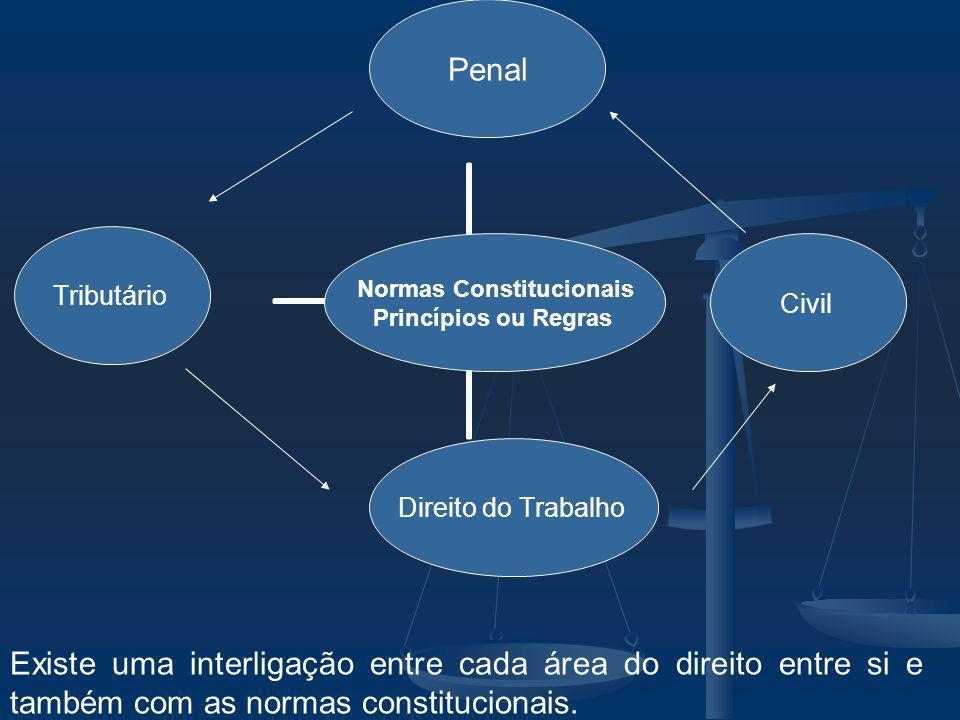 Existe uma interligação entre cada área do direito entre si e também com as normas constitucionais.