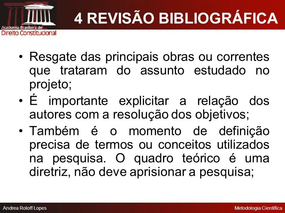 4 REVISÃO BIBLIOGRÁFICA