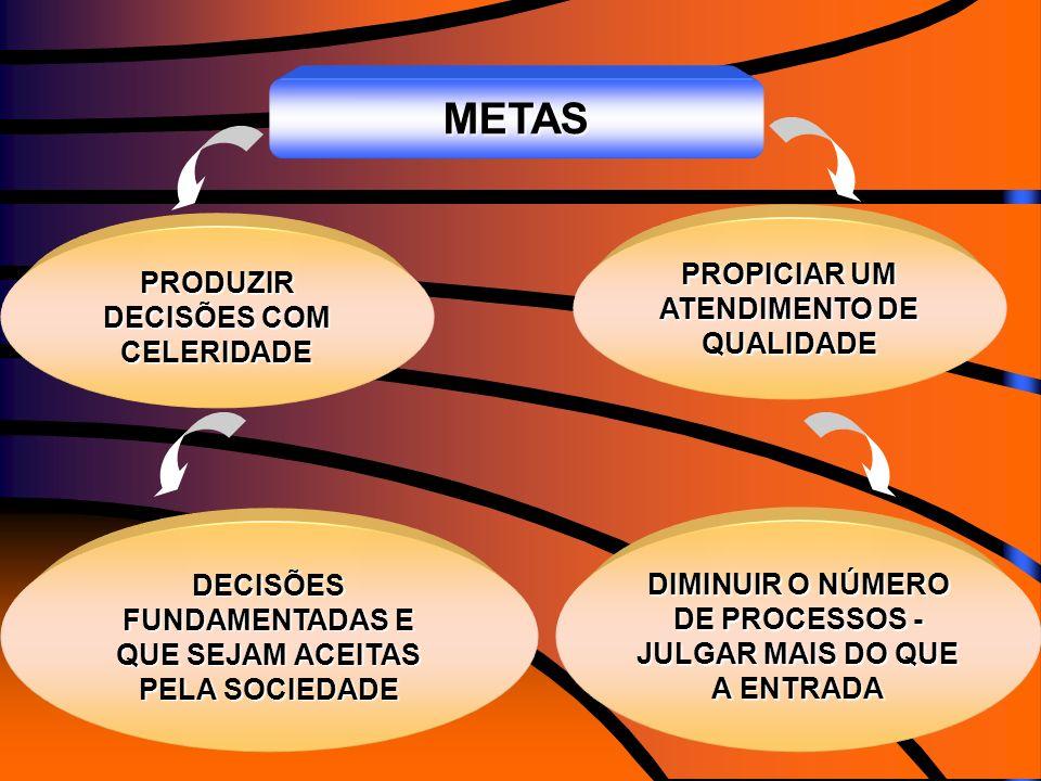 METAS PROPICIAR UM ATENDIMENTO DE QUALIDADE