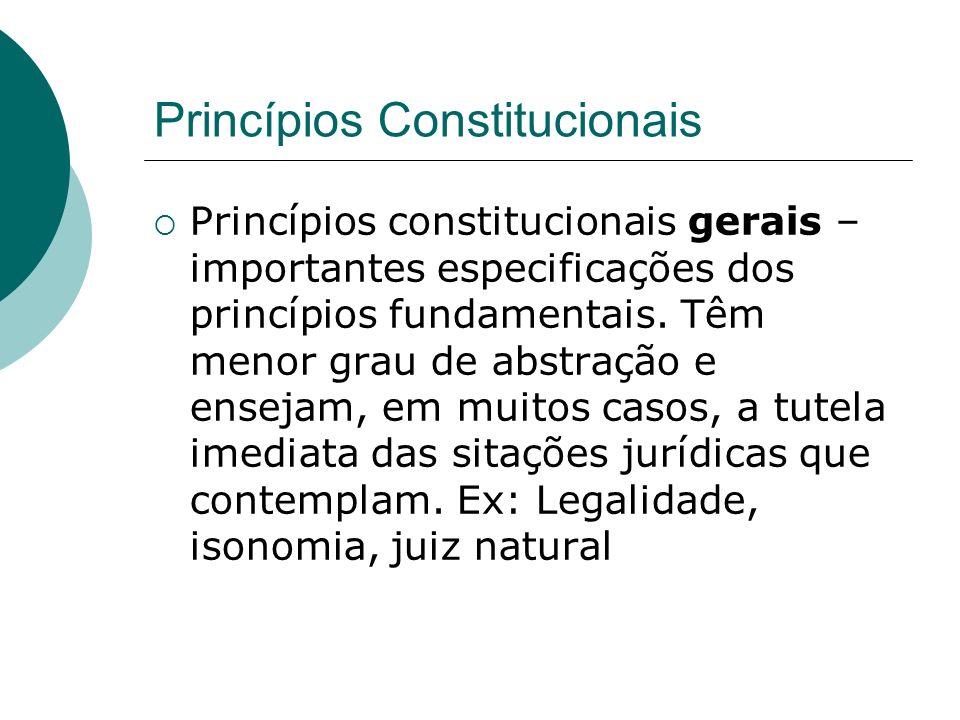 Princípios Constitucionais