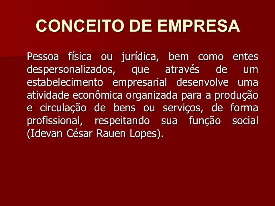 CONCEITO DE EMPRESA