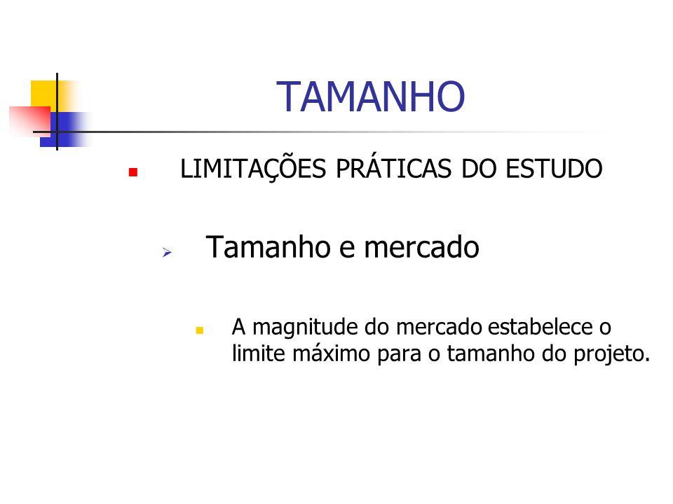 TAMANHO Tamanho e mercado LIMITAÇÕES PRÁTICAS DO ESTUDO