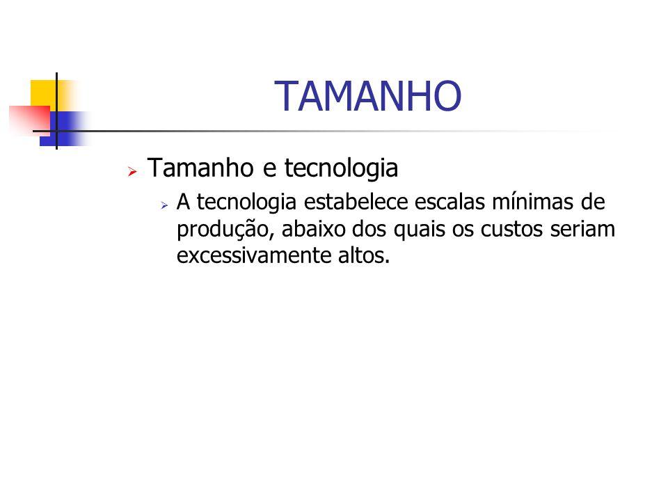 TAMANHO Tamanho e tecnologia