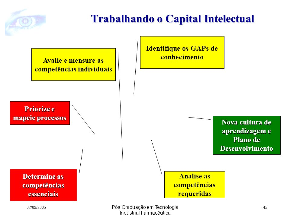Trabalhando o Capital Intelectual