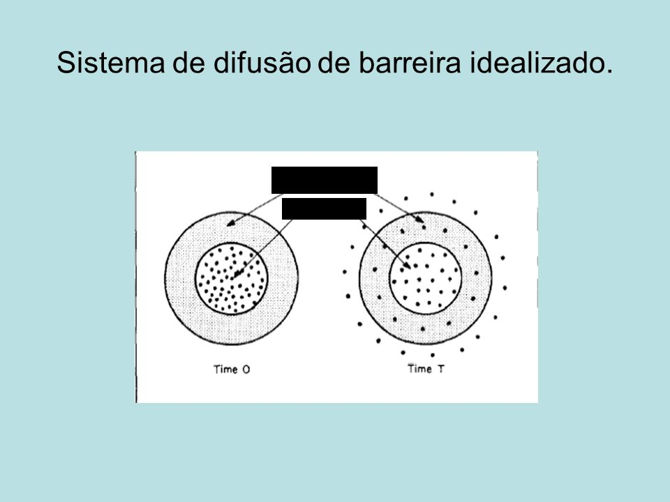 Sistema de difusão de barreira idealizado.
