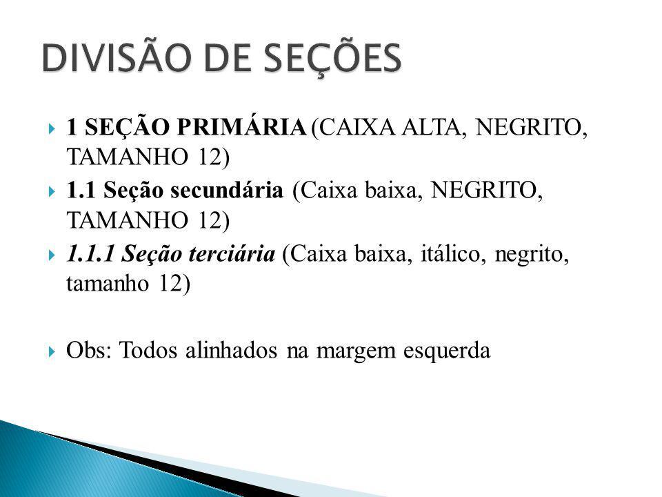 DIVISÃO DE SEÇÕES 1 SEÇÃO PRIMÁRIA (CAIXA ALTA, NEGRITO, TAMANHO 12)