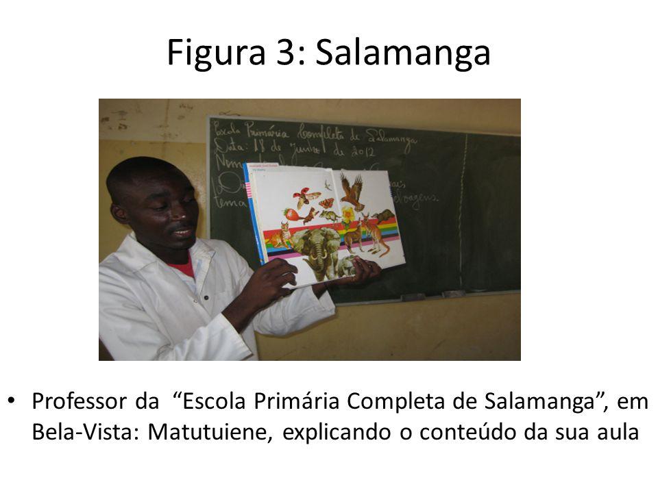 Figura 3: Salamanga Professor da Escola Primária Completa de Salamanga , em Bela-Vista: Matutuiene, explicando o conteúdo da sua aula.