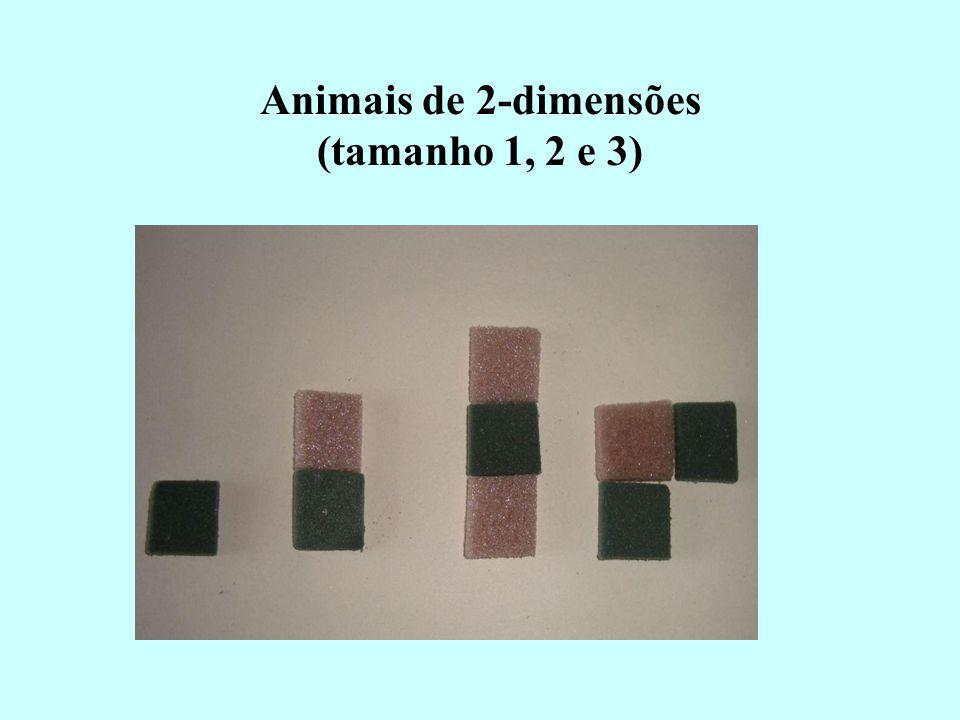 Animais de 2-dimensões (tamanho 1, 2 e 3)