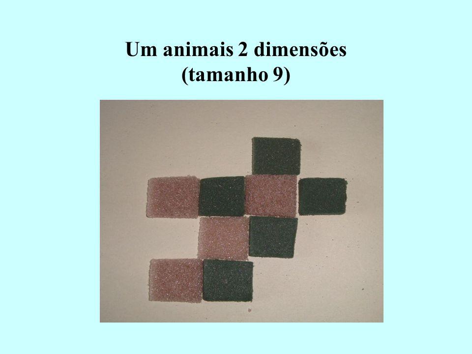 Um animais 2 dimensões (tamanho 9)