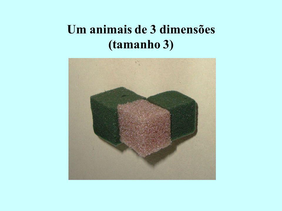 Um animais de 3 dimensões (tamanho 3)