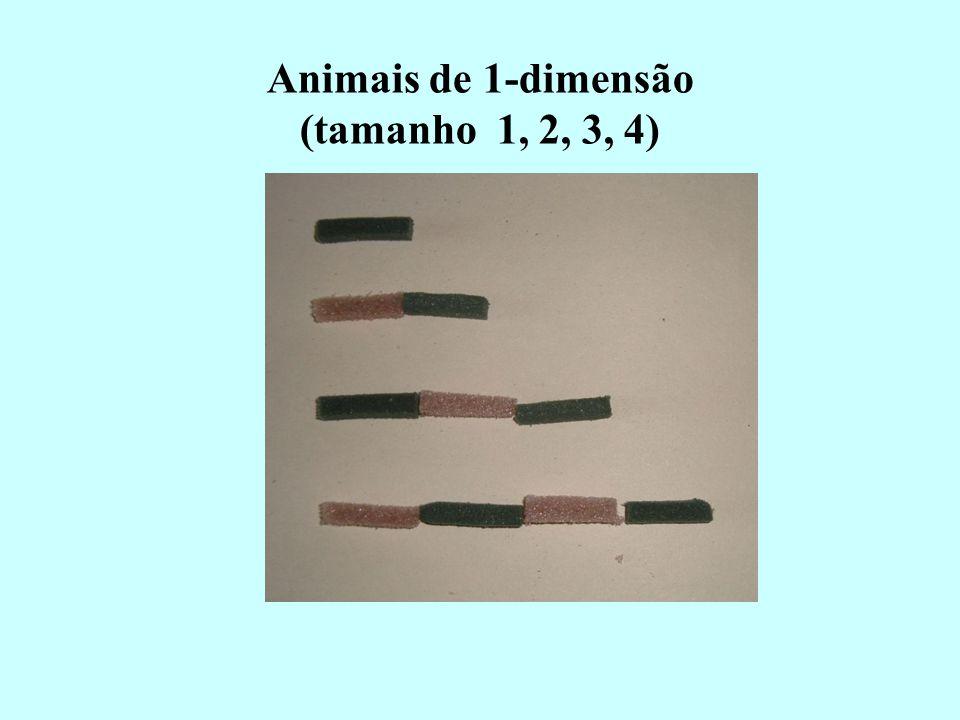 Animais de 1-dimensão (tamanho 1, 2, 3, 4)