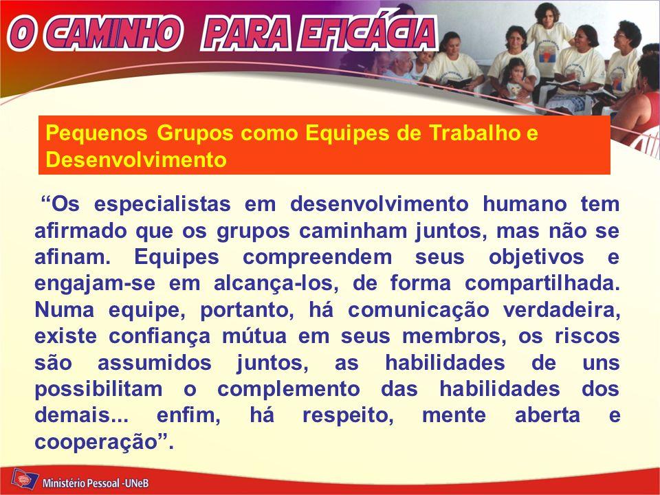 Pequenos Grupos como Equipes de Trabalho e Desenvolvimento