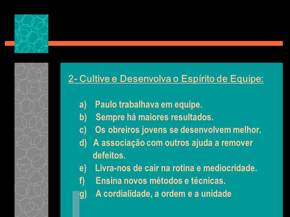 2- Cultive e Desenvolva o Espírito de Equipe: