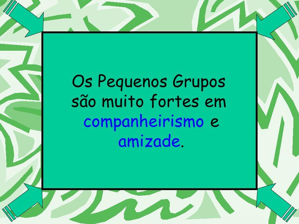 Os Pequenos Grupos são muito fortes em companheirismo e amizade.