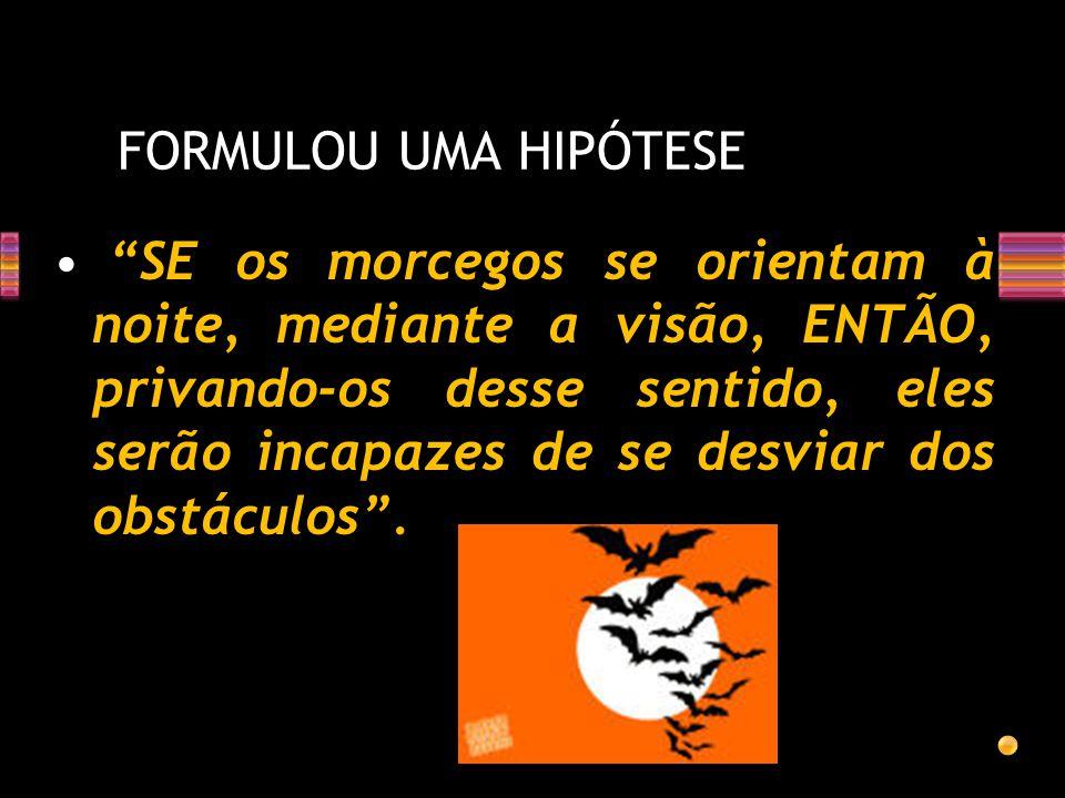 FORMULOU UMA HIPÓTESE