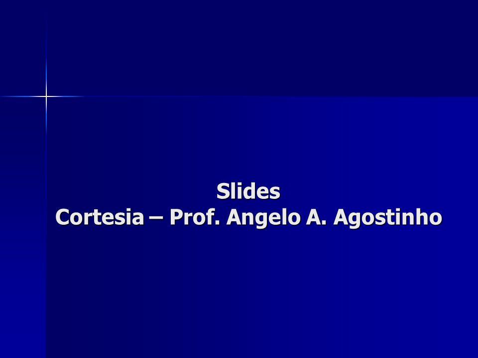 Cortesia – Prof. Angelo A. Agostinho