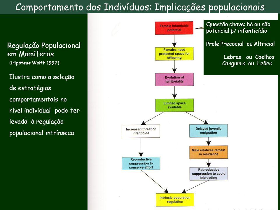 Comportamento dos Indivíduos: Implicações populacionais
