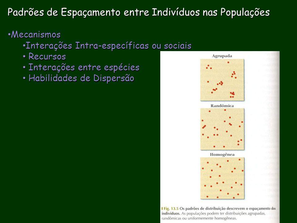 Padrões de Espaçamento entre Indivíduos nas Populações