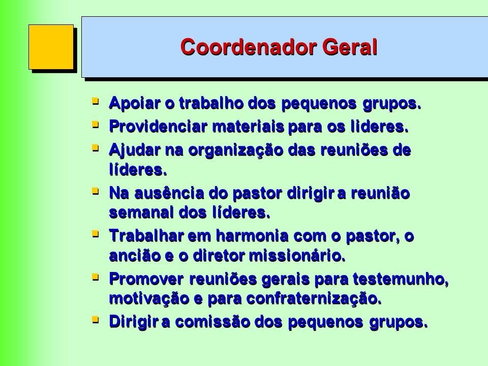 Coordenador Geral Apoiar o trabalho dos pequenos grupos.