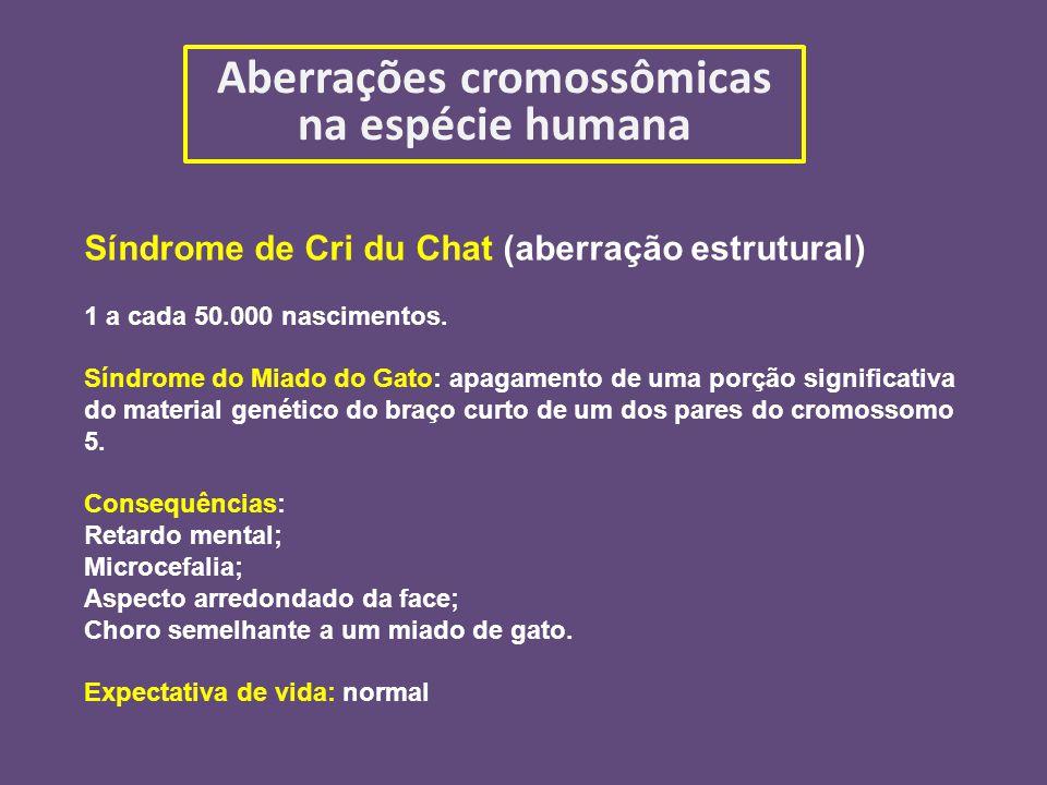 Aberrações cromossômicas na espécie humana