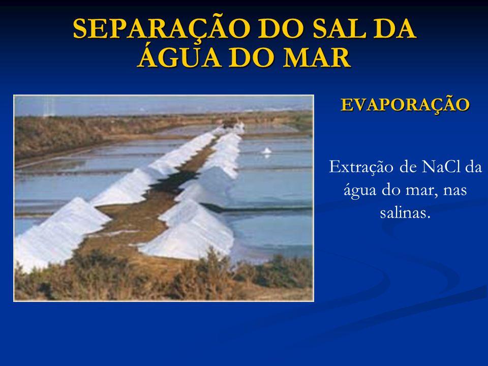 SEPARAÇÃO DO SAL DA ÁGUA DO MAR